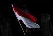 Peselancar Indonesia Rio Waida membawa bendera Merah-Putih saat defile pembukaan Olimpiade Tokyo 2020 di Stadion Nasional, Tokyo, Jepang, Jumat (23/7/2021).